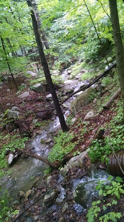 stream-small.jpg